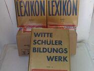 Schüler-Lexikon + Bildungswerk v. Witte, Band I - III