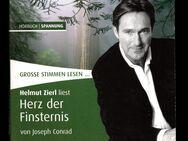 Herz der Finsternis - Joseph Conrad - Hörbuch Spannung Mystery Fantasy und Schauergeschichten - Nürnberg