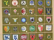 Fußball international Stoffembleme + Anstecknadeln zur Raumgestaltung, Originale NEUwertig - Bamberg