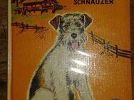 """Sehr schönes Kinderbuch """"Bazi – der Bärenschnauzer"""" von Theo Holl, Neuer Jugendbuch Verlag, stammt aus 1967, 80 Seiten, ISBN: 3483009108, zum Schutz für weiteren Gebrauch schon eingebunden, sehr guter Zustand, 4,- € - Unterleinleiter"""