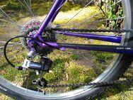 "Großes Vintage MTB Scott Sawtooth, Mountainbike, RH 21"" - Nürnberg"