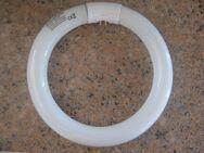 Ersatzlampe, rund, für Insectivoro Insektenfänger 368 & 361 - Steinmauern