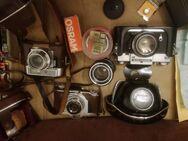 Alte Fotoapparate - Finsing