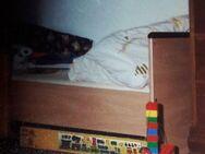Kinder-/Juniorbett - Oberhausen