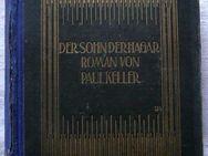 Roman von 1907 - Der Sohn der Hagar von Paul Keller - Niederfischbach