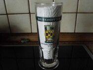 BVB 09 Bier Gläser Krüge Dortmund 1996 1999 - Bottrop
