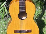 Tolle 3/4 Konzertgitarre *Nylonsaiten* Parlor Gitarre in Hessen zu verkaufen… - Schotten