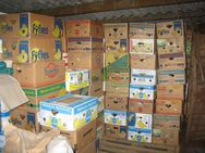 50 Bananenkisten voller Haushaltsartikel für Flohmarkt-Verkäufer - Bad Belzig