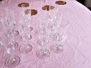Sektglas 6er Set, Champagnerglas, Proseccoglas - Leverkusen