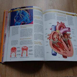 Menschen und Körper - Niestetal