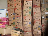 Über 200 leere stabile Bananenkartons, Bananenkisten, Umzugskarton, super stapelbar zu verkaufen - Bad Belzig