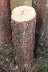 Kiefern-Hackklotz zum Brennholz selber hacken, 80cm hoch