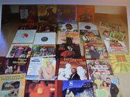 Schallplatten 35 x LP ,27 Singles, 24 Schellack Platten Schallplatten 35 Teile - Hennef (Sieg) Zentrum