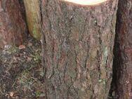 Hackklotz, um selber sein Brennholz klein zu hacken - Bad Belzig Zentrum