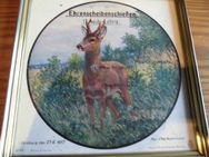 Polizei Duisburg 27.06.1957 Ehrenpreis 13. Ausbilderlehrgang Druck August Uhl Kunstverlag Scheibe Rahmen - Bottrop
