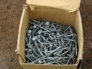 1 kg Rinneisen- nägel - stifte 4,2 x 65 mm, Feuerverzinkt, gut abgelagerter. - Wesseling