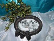 Bilderrahmen / Tischbilderrahmen 3 kleinen Hunde - Welpen / Möpse / 13 x 18 cm - Zeuthen