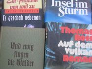 Romane und ähnliche Literatur ohne Ende / Teil 4 - Soltau Zentrum