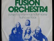 Fusion Orchestra - When My Mama's Not At Home (Single)