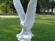 Adler Beton-Steinfigur NEU aus unseren Dekofigurenshop - Hergisdorf