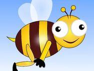 Stärken Sie Ihr Immunsystem mit Bienen Propolis - JETZT zum Bestpreis - Berlin