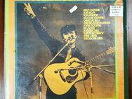 Folk Singer Story Arlo Guthrie Tom Rush Schallplatte Doppel LP - Trendelburg Zentrum