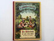 Lämmerweide. Bilderbuch für Kinder. Von Huldreich Verus, H. Barmführ - Königsbach-Stein
