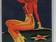 Nostalgie Metal card Pin Up Airforce Army Girl Blech-Postkarte Blechschild - Spraitbach
