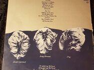 Schallplatte Vinyl 12'' LP - The Police - Regatta De Blanc [1979] - Zeuthen