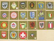 Nationalverbände Stoffembleme + Anstecknadeln zur Raumgestaltung, Originale NEUwertig - Bamberg