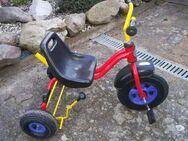 Dreirad Marke Puky rot-gelb für Kinder ab 2 Jahren und ab 90 cm mit verstellbarem Sitz, Freilaufautomatik, hoher Kippsicherheit, Sicherheitslenkergriffen, Handbremse *** Selbstabholung oder versicherter Versand möglich! - Schellerten