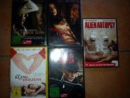 5 DVD Filme - Argenschwang