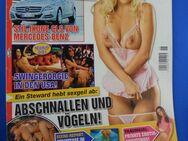 Magazin  PRALINE  2010 - Wuppertal