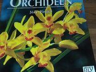 Gärtnern leicht und richtig - Orchideen. Broschierte TB-Ausgabe v. 1996, BLV Verlagsgesellschaft, Jörn Pinske (Autor) - Rosenheim