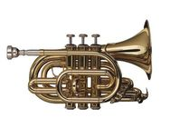 Schagerl Taschen - Trompete in B, NEU inkl. Leichtkoffer - Hagenburg