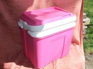 rosa Kühlbox auch für Gefriergut verwendbar - Bad Belzig Zentrum