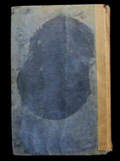 George Taylor - Klytia / gebundene Ausgabe von 1909 - Niddatal Zentrum