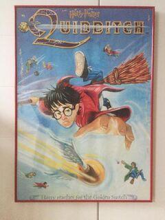 Harry Potter Quidditch Kunstdruck / Poster in Museumsqualität - Bremen