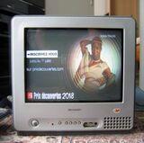 Fernseher Sharp TV Flachbildschirm 15 Zoll