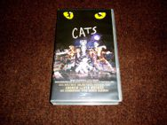 VHS Musical Cats - Melsungen