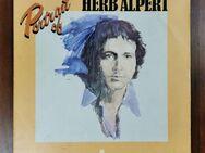 Portrait of Herb Alpert Jerry Moss Schallplatte Doppel LP - Trendelburg Zentrum