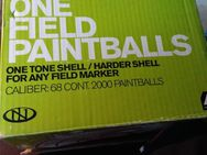 New Legion One Paintballs