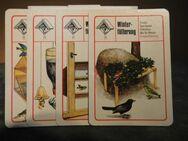 DDR Lehrquartett Geschützte Vögel / Spiel ab 10 Jahre, Pössneck Verlag 1977 - Zeuthen