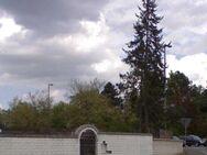 Immobilien-Sanierungen, kompl. Service aus einer Hand - Simbach (Inn) Zentrum