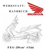 Honda Pantheon FES 250 cm³ 4 Takter - Werkstatthandbuch