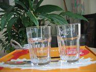 2 Latte Macchiato Gläser Milchschaumrezeptheft Schablone Entkalker - Celle