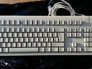 Fujitsu Siemens Computers KB SC USB D Keyboard S26381-K361-L120-. 5V DC 50mA Tastatur USB Typ A MULTI MEDIA
