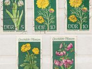 DDR_Briefmarken_Geschützt_Pflanzen (1)  [376] - Hamburg