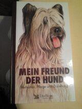 Mein Freund der Hund