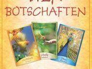 "Karten-Set ""Tierbotschaften"" - Sarstedt"